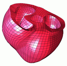 TrueGrid Mesh of the Human Heart